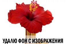 Обработка фотографии, ретушь, устранение дефектов 3 - kwork.ru