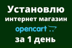 Интернет-магазин - создание и настройка 12 - kwork.ru