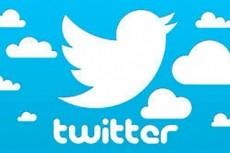Добавлю 500 качественных фолловеров на Ваш аккаунт в твиттере 12 - kwork.ru