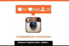 Продвижение Вашего Instagram аккаунта, через Платный сервис раскрутки 13 - kwork.ru