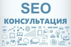Качественный аудит контекстной рекламы 17 - kwork.ru