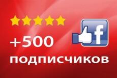 Установка WordPress CMS на ваш хостинг 8 - kwork.ru