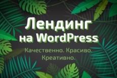 Создам лендинг на wordpress 12 - kwork.ru