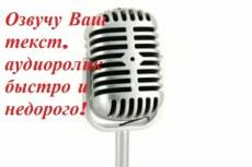 Озвучу ролик, начитка 20 - kwork.ru