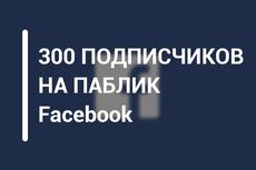 Подписчики в паблик Facebook с фильтрами. Не группа. Гарантия 19 - kwork.ru