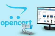 Создам интернет-магазин на CMS OpenCart 49 - kwork.ru