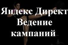 проведу аудит рекламной кампании в Яндекс Директ 6 - kwork.ru