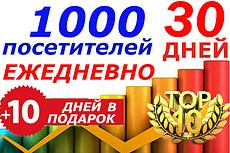 Трафик на сайт. 130-150 посещений ежедневно на 70 дней. Бонус 19 - kwork.ru