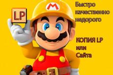 Скопирую landing page с виджетами или сделаю копию многостраничного 15 - kwork.ru