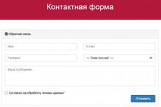 Поставлю и настрою форму обратной связи на любом сайте 16 - kwork.ru