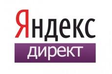 Настройка Яндекс Директ + бонус настройка метрики 22 - kwork.ru
