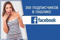 200 подписчиков с фильтрами в паблик Facebook. Не группа. Гарантия 10 - kwork.ru