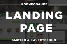 Скопирую и настрою любой лендинг, страницу 21 - kwork.ru
