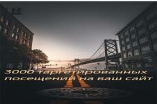 3000 живых подписчиков на страницу в instagram 11 - kwork.ru