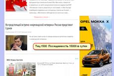 Напишу статью и размещу её в интернете 3 - kwork.ru