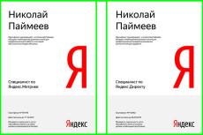 Проведу Аудит и дам рекомендации по улучшению Яндекс Директ 27 - kwork.ru