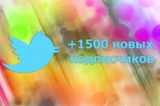 Комплексное продвижение в Твиттер - 50 подписчиков 13 - kwork.ru