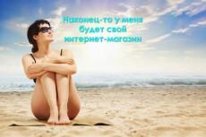 Качественный интернет-магазин на WordPress 7 - kwork.ru