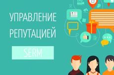 Профессиональный SEO аудит сайта 35 - kwork.ru