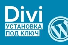 Переведу с английского на русский язык Premium Wordpress тему 12 - kwork.ru