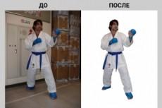 Удаление фона с 40 изображений (обтравка) 15 - kwork.ru