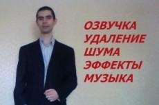 Озвучу Ваше видео, добавлю музыку и спецэффекты 13 - kwork.ru
