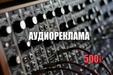 Аудиоролик до 1 минуты 21 - kwork.ru