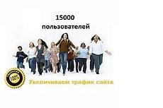 Поисковый трафик на ваш ресурс 6000 уникальных посетителей 17 - kwork.ru