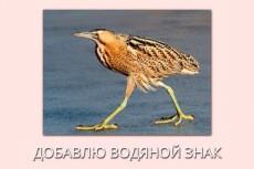 Удалю ненужные объекты с фото 3 - kwork.ru