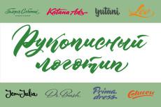 Логотип в векторе по вашему эскизу 63 - kwork.ru