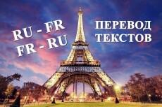 Сделаю перевод с английского/французского на русский 3 - kwork.ru