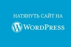 SEO анализ - исправлю ошибки вёрстки сайта на Вордпресс 14 - kwork.ru