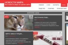 Продам автонаполняемый новостной финансовый сайт. Премиум 11 - kwork.ru