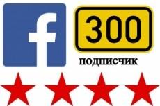 Добавлю 3000 подписчиков на паблик FanPage в Facebook 12 - kwork.ru