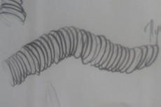Иллюстрации для книги 43 - kwork.ru