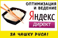 Ведение рекламной кампании в течение 3-х дней 21 - kwork.ru