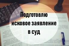Подготовлю исковое заявление в суд 22 - kwork.ru