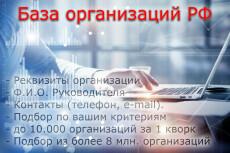 Соберу базу данных организаций РФ 14 - kwork.ru