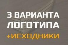 Логотип, 2 варианта + визитка. Исходники psd+png в подарок 19 - kwork.ru