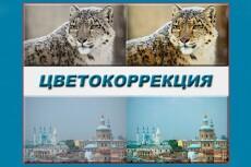 Качественная обтравка изображений 15 - kwork.ru