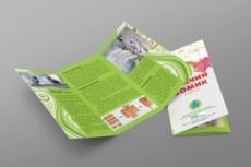 Буклеты, свежие буклеты 17 - kwork.ru