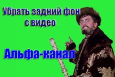 Монтаж и обработка видеофайлов 33 - kwork.ru