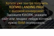 Копирую Landing Page с гарантией [под ключ] 10 - kwork.ru