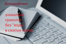 Статья про инвестиционный проект. Напишу качественную статью, обзор 12 - kwork.ru