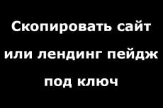 Копия лендинга под ключ 6 - kwork.ru
