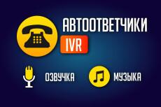 Аудиоролик под ключ, включая озвучку и музыку. Реклама, квест, гид 18 - kwork.ru
