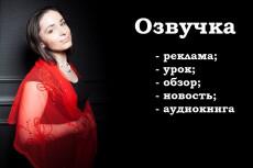 Озвучка любого текста на профессиональный микрофон за 30 минут 32 - kwork.ru