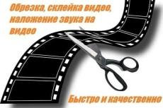 Напишу любые статьи и тексты 17 - kwork.ru