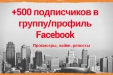 700 подписчиков на вашу площадку в facebook + активность 23 - kwork.ru