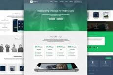 Сделаю копию Landing Page и размещу ее на хостинге 12 - kwork.ru